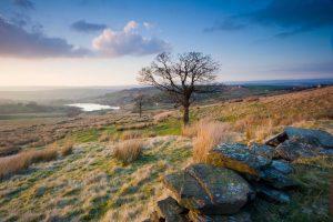 Haworth Moor where the Bronte sisters walked